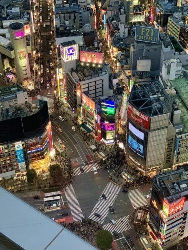 アインシュタインが東京進出!関西でのレギュラー番組はどうなる?ファンの意見は?